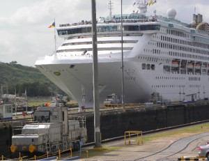 Guided by a mule, lower left, a cruise ship moves through a lock chamber.