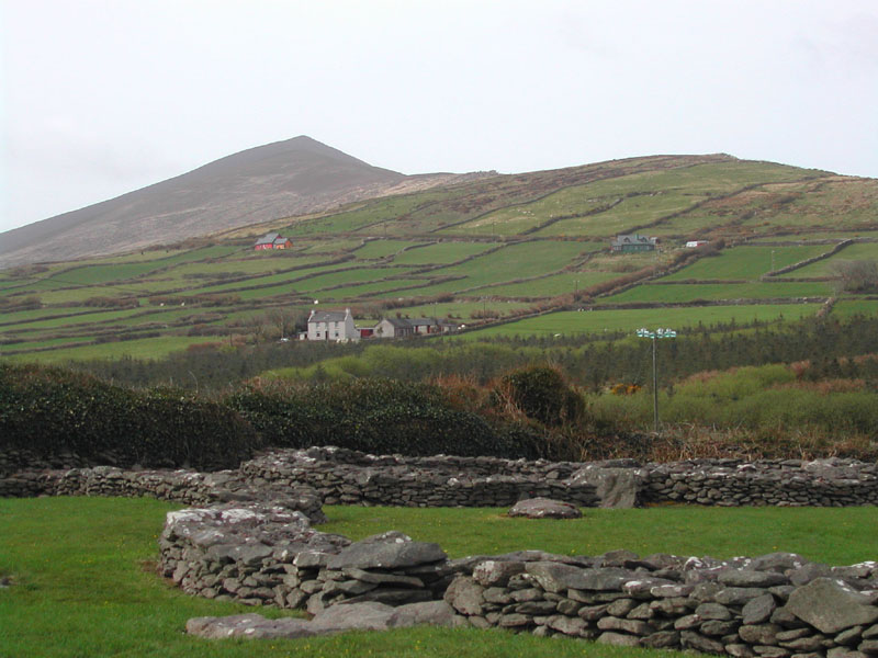The fields are a patchwork quilt, stitched together by walls of stones.